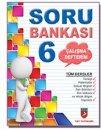 Mercek Yayınları 6.Sınıf Tüm Dersler Soru Bankası